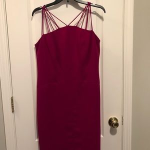 Fuchsia sexy fitted dress.